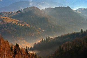 Відпочинок в Буковелі, пейзаж Карпати
